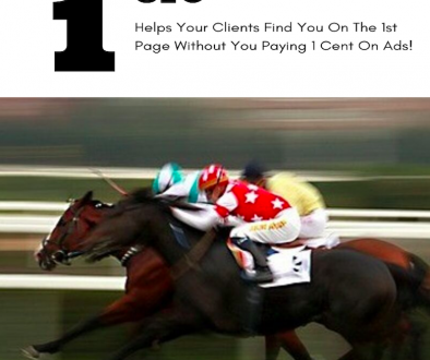 SEO Checklist Horse Photo
