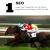 SEO Checklist Horse Photo